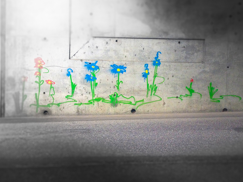 Fleurs en chemin, Aime-la-Plagne, août 2018